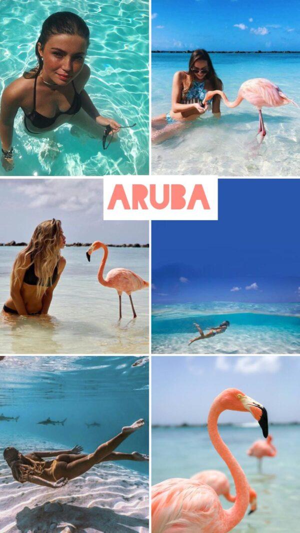 Aruba filtro professionale lightroom